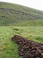 Turf cutting - geograph.org.uk - 220078.jpg