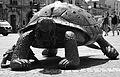 Turtle statue Bordeaux.jpg