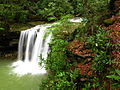 Twin-waterfalls-2 - West Virginia - ForestWander.jpg
