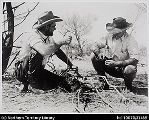 Stockman (Australia) - Two stockmen at Brunette Downs Station ca. 1953