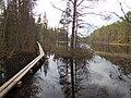 Tysjöarna-Jämtland-Sweden 06.jpg