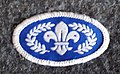 UK Cubs Chief Scouts Silver Award 2002 design.jpg