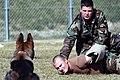 US Navy 031204-N-8937A-075 Master-at-Arms 2nd Class Joshua Lynch subdues Master-at-Arms 2nd Class Shane Siewart.jpg