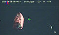 US Navy 090409-N-0000X-939 In a still frame from video taken by the Scan Eagle unmanned aerial vehicle, a 28-foot lifeboat from the U.S.-flagged container ship Maersk Alabama is seen Thursday, April 9, 2009 in the Indian Ocean.jpg