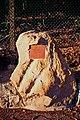 Uffeln Gedenkstein Grube Mieke 2.jpg