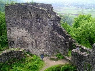 Nevytske Castle - Image: Ukraine.Nevitske.Cas tle 03