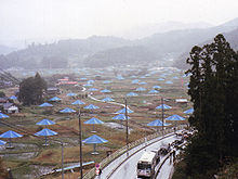 A large field with oversized blue umbrellas at regular intervals. Mountains are barely visible in the background as fog descends.