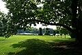 Under The Spreading Chestnut Tree - geograph.org.uk - 955835.jpg