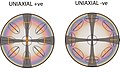 Uniaxial interference figures.jpg