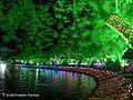 Upvan in night lights.jpg