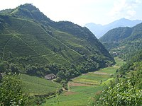 VM 5335 Muyu Tea plantations on valley slopes north of town.jpg