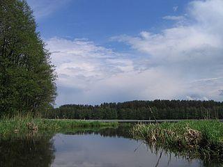 Varėnio ežeras. Foto:JonasS at lt.wikipedia