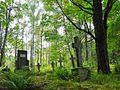 Vecumnieki parish, Latvia - panoramio (10).jpg