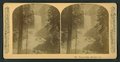 Vernal Falls, 630 feet. Cal, by Littleton View Co. 3.png