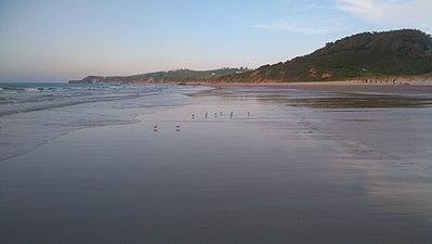 Vida en Oyambre, San Vicente de la Barquera, Playa de Merón.jpg