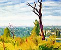 View from Chennevieres Albert Marquet.jpg