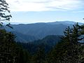 View from Mount LeConte.jpg