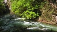 File:Vintgar Gorge, Slovenia - Bled.webm