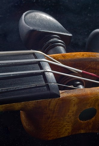 Nut (string instrument) - Image: Violin Nut 1
