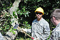 Virginia Guard soldiers clear fallen trees 110828-A--269.jpg