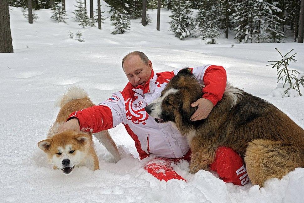 Vladimir Putin 24 March 2013 (9).jpeg
