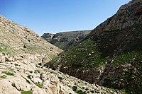 Wadi-Makukh-561.jpg