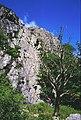 Wallowbarrow - geograph.org.uk - 6014.jpg