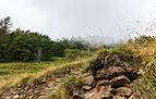 Wandeling over het botanische pad van Cogolo naar Peio Paese 04.jpg
