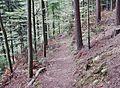 Wanderweg - panoramio (71).jpg