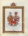 Wappen Rinna von Sarenbach.jpg