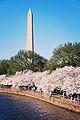 Washington Monument - March 2010.jpg