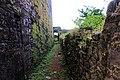 Way to Kachehari Raisen fort (2).jpg