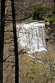 Webster's Falls from the Bruce Trail (5751643277).jpg