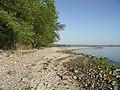 Weg am Strand nach Barso Laending (2008-05) - panoramio.jpg