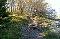 Weg zum Altkönig (Gipfel) - panoramio.jpg