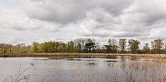 Wijnjeterper Schar, Natura 2000-gebied provincie Friesland 023.jpg