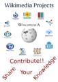 Wiki english.png