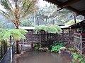 Wildlife Zoo in Kuranda - panoramio.jpg