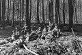 Wilhelm Walther, Dienst im Wald 2, 2-067-068-5897.tif