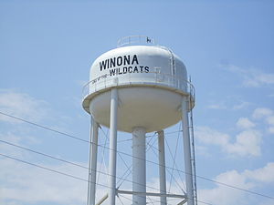 Winona, Texas - Winona water tower