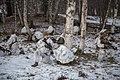 Winter Patrol 181221-D-PB383-015 (46407300741).jpg