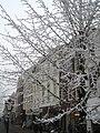 Winterwonderland (2126297487).jpg