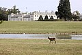 Woburn Abbey Deer Park - October 2009 (4021314441).jpg
