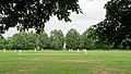 Woodford Green CC v. Hackney Marshes CC at Woodford, East London, England 003.jpg