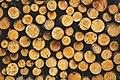 Woodpile texture.jpg