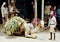 Yemen, gente 1987 13.jpg