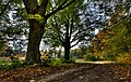 Zalenieki manor's park at autumn - Igors Jefimovs - Panoramio.jpg