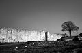 Zidine Despotovog grada.jpg