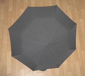 Octagon - Image: Zont 8 ugolnik