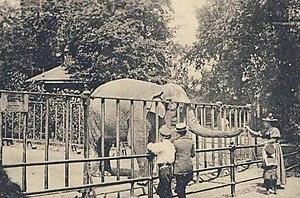 Zoological Garden of Hamburg - A postcard from 1900 featuring an elephant at the Zoological Garden of Hamburg